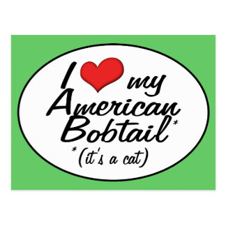 It's a Cat! I Love My American Bobtail Postcard