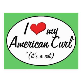 It's a Cat! I Love My American Curl Postcard