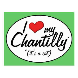 It's a Cat! I Love My Chantilly Postcard