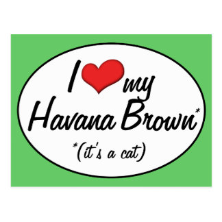 It's a Cat! I Love My Havana Brown Postcard