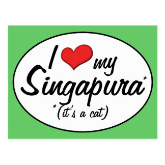 It's a Cat! I Love My Singapura Postcard