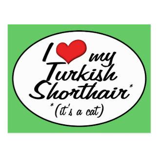 It's a Cat! I Love My Turkish Shorthair Post Card