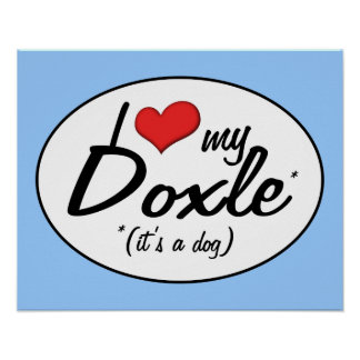 It's a Dog! I Love My Doxle Poster