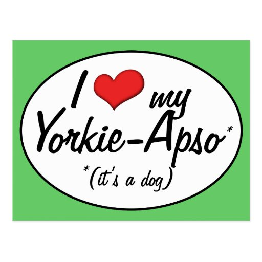 It's a Dog! I Love My Yorkie-Apso Post Card