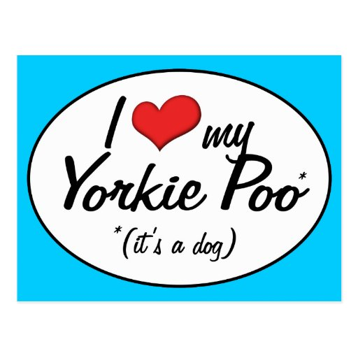 It's a Dog! I Love My Yorkie Poo Post Cards
