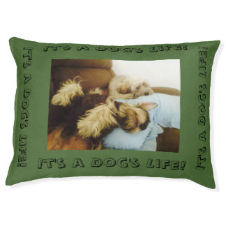 It's a Dog's Life! Pet Bed