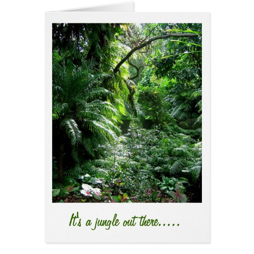 It's a jungle out there..... greeting card