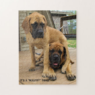 "It's a ""Mastiff"" thing! English Mastiff dog puzzle"