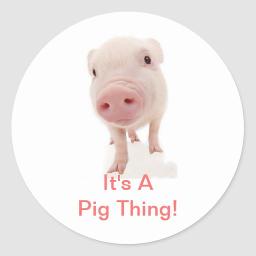 It's A Pig Thing Round Stickers