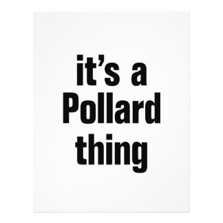 "its a pollard thing 8.5"" x 11"" flyer"
