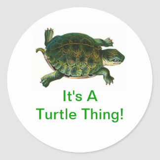 It's A Turtle Thing Classic Round Sticker