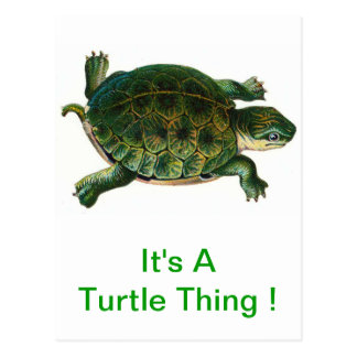 It's A Turtle Thing Postcard