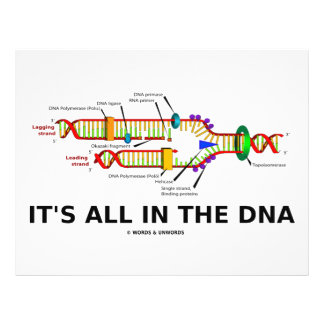 It's All In The DNA 21.5 Cm X 28 Cm Flyer
