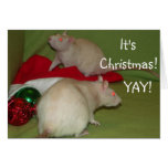 It's Christmas! card Greeting Cards