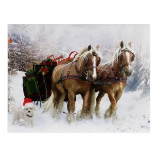 It's Christmas Postcard