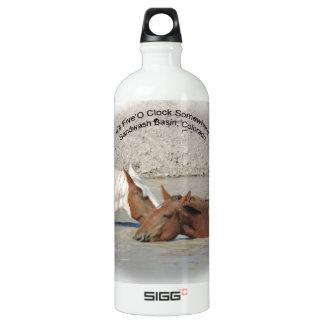Its Five SomeWhere SIGG Traveller 1.0L Water Bottle