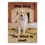 It's Halloween! The wicked witch is dead! Greeting Card