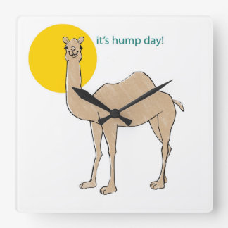It's hump day! square wall clock
