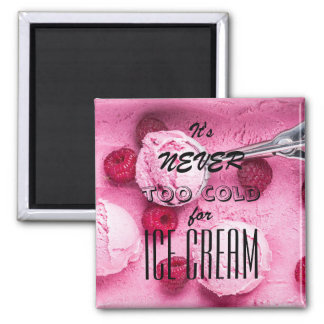 It's never too cold for ice cream magnet