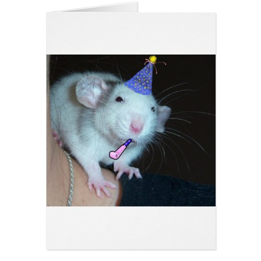 It's Not a Party Till a Rat Shows Up! Greeting Card