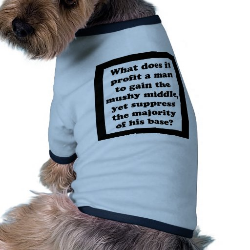 It's The Base, Sir! Pet Clothes