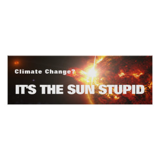 It's the Sun Stupid Poster