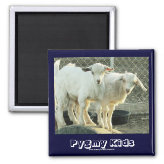 It's Twins! - Cute Pygmy Goat Kids - Western Square Magnet