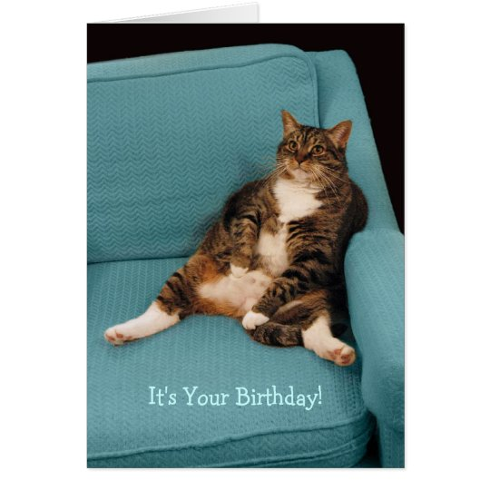 It's Your Birthday Big Fat Tabby Cat Greeting