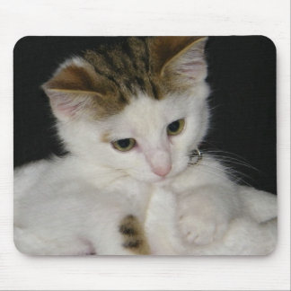 ITTY BITTY KITTY ALL IN WHITE MOUSE PAD