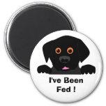 , I've Been Fed ! Magnets