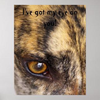 I've got my eye on you! poster