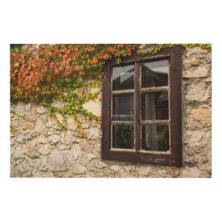 Ivy And Window, Croatia Wood Wall Decor