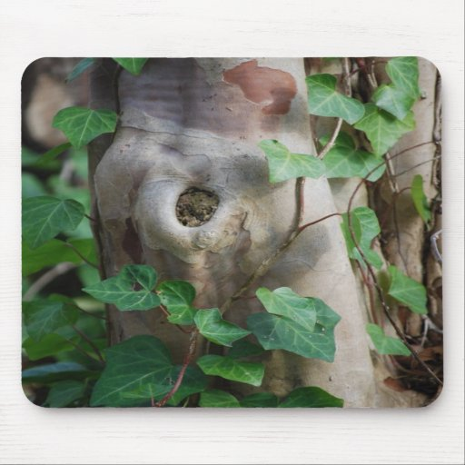 ivy knot tree trunk mousepads