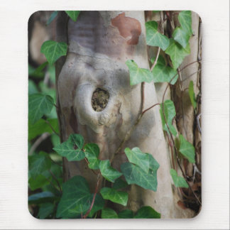 ivy knot tree trunk mouse pad
