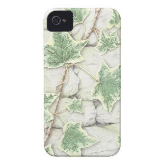 Ivy on a Dry Stone Wall in Pencil iPhone 4 Case
