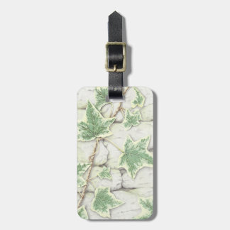 Ivy on a Dry Stone Wall in Pencil Luggage Tag