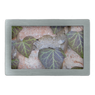 ivy on the tree rectangular belt buckles
