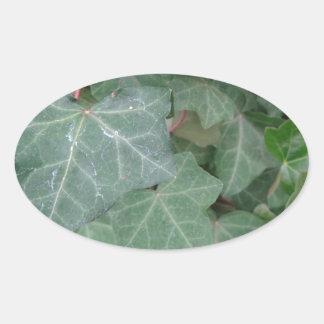 Ivy Tree Oval Sticker