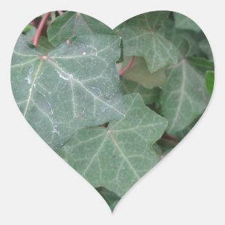 Ivy Tree Heart Sticker