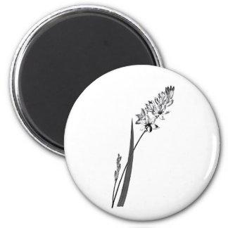Ixia Erecta 6 Cm Round Magnet