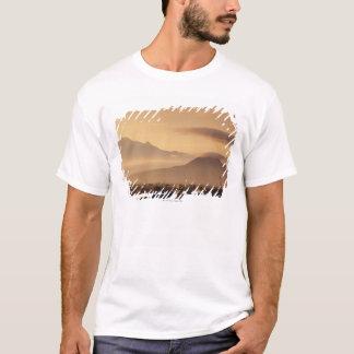 Ixtaccihuatl Volcano T-Shirt