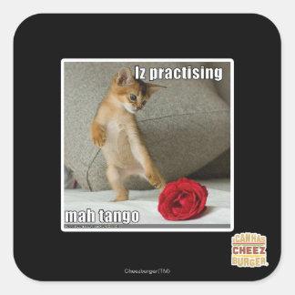 Iz practising mah tango square sticker
