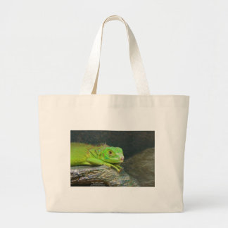 Izzy Iguanna Bag