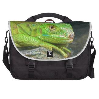 Izzy Iguanna Computer Bag