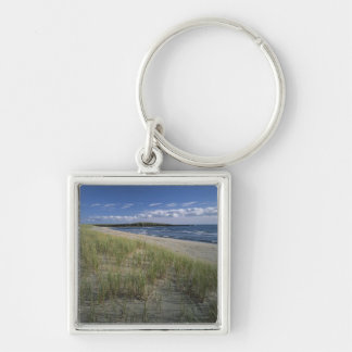 J.T. Chessman Provincial Park, Dune grass Silver-Colored Square Key Ring