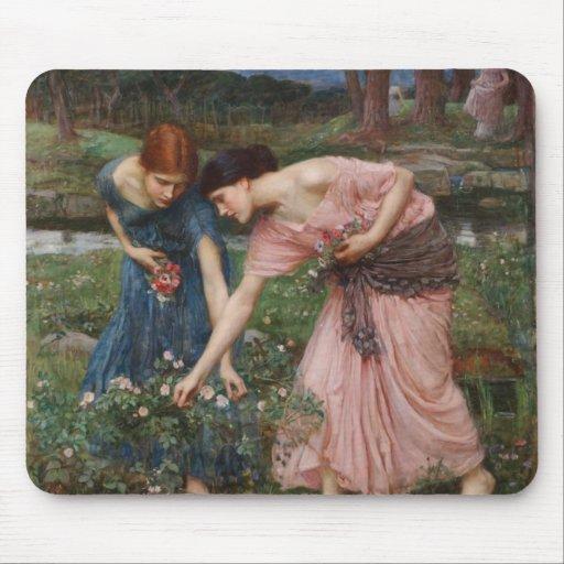 J.W. Waterhouse Gather Ye Rosebuds Mouse Pads