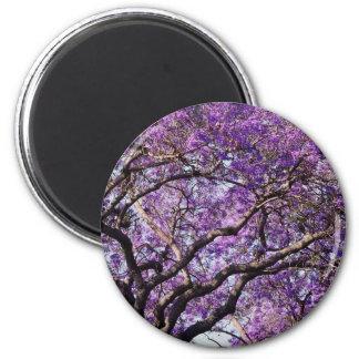 Jacaranda tree in spring bloom flowers 6 cm round magnet