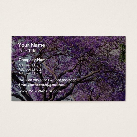 Jacaranda tree in spring bloom flowers business card