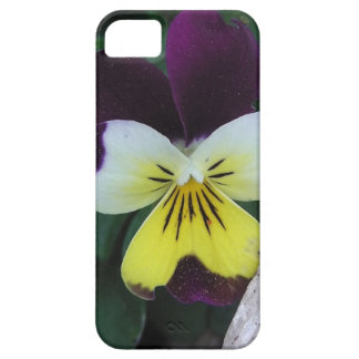 Jack and Jill iPhone 5 Cases