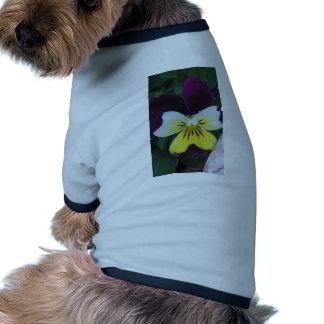 Jack and Jill Pet Clothing